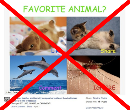 favorite-animals
