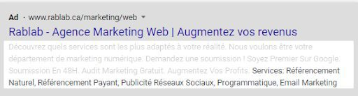exemple d'extension snippets Google Ads